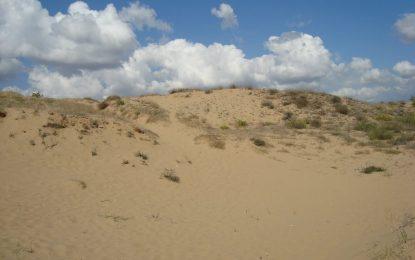 Съдът сложи край на опитите за застрояване на дюните край Несебър