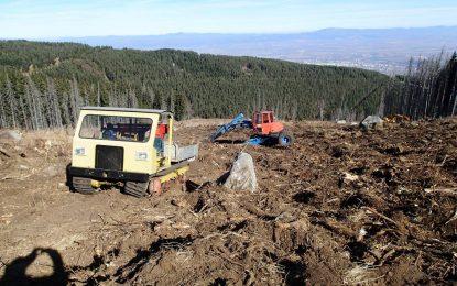 Фирмата, изорала Витоша, е наета от горските