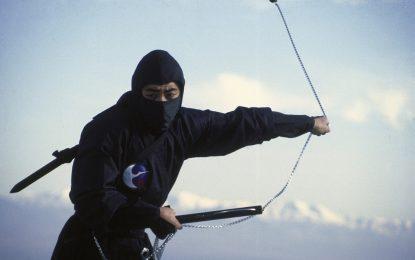 Япония търси да назначи нинджи