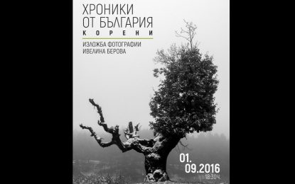 Коренищата български през обектива