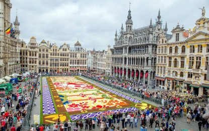 Центърът на Брюксел отново е цветен килим (галерия)