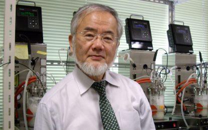 Японец спечели Нобеловата награда за медицина