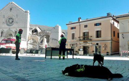 3000 без дом след земетресението в Италия, но без жертви