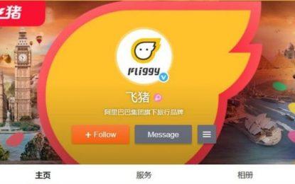 """""""Летящото прасе"""" на Alibaba вбеси мюсюлманите в Китай"""
