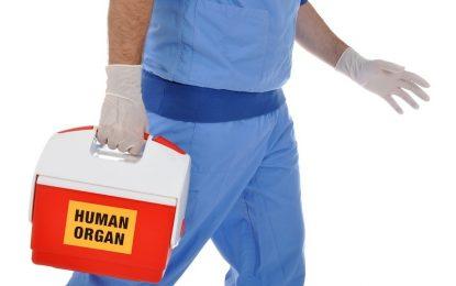 Изкуствен интелект помага на трансплантациите в Австралия
