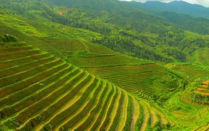 15 изумителни факта за Китай