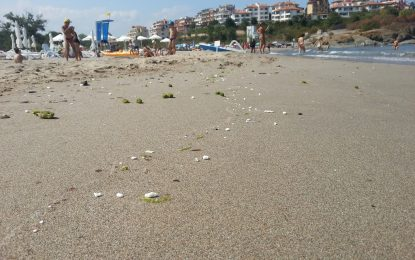 Акции срещу незаконни къмпинги по Черноморието