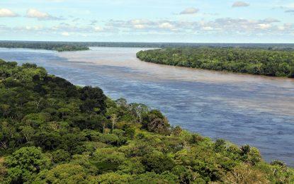 325-метрова кула в сърцето на Амазония