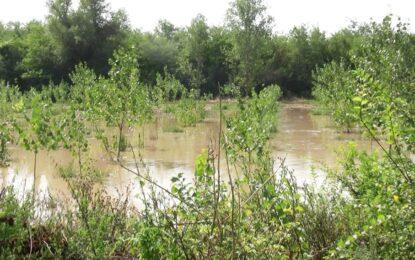 Екоминистерството предупреди за опасност от преливане на реки