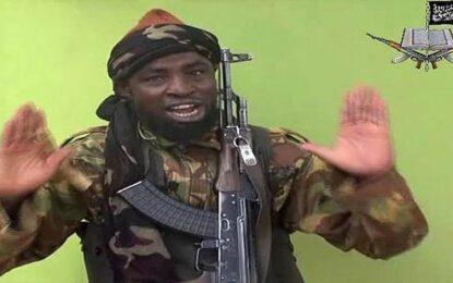 130 бойци на Боко Харам се предадоха в Нигерия