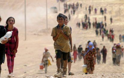 Децата на халифата