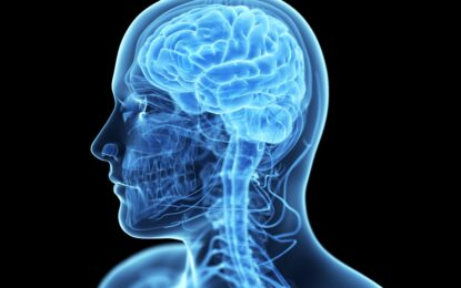 """За първи път учени видяха как мозъкът упражнява """"свободна воля"""""""