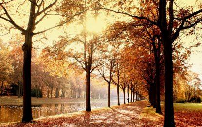 Ноември идва със сняг и слънце