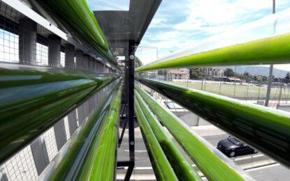 Водорасли чистят въздуха над швейцарска магистрала