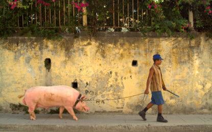 Куба връща частния бизнес