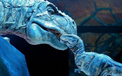 … А ДАНС си стреля по динозаврите