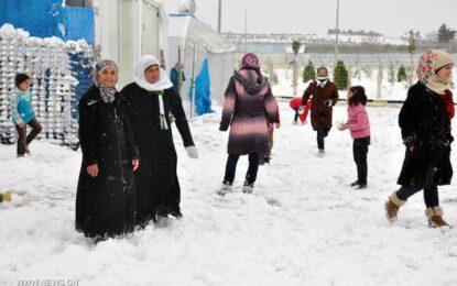 Турция снабди 1.5 милиона сирийски бежанци с лични карти