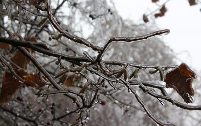 Жълт код за ниски температури на 2 януари