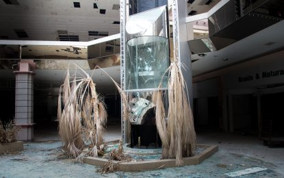 Молът умира, да живее пазаруването