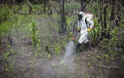 ООН обяви пет пестицида за канцерогенни