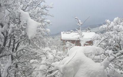 Снегът идва за Нова година