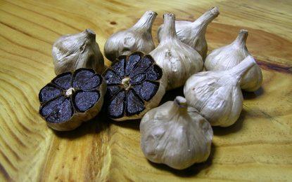 Черен чесън по 200 лева килото дарява безсмъртие