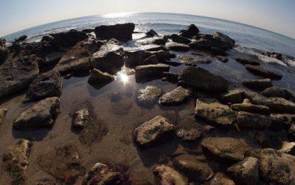 Кметът на Варна обяви бедствено положение в Морската градина