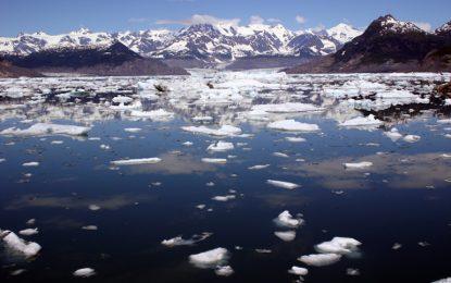 САЩ пуснаха Shell до нефта на Арктика