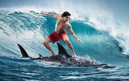 Кому е нужна дъска за сърф, когато има акула подръка (Видео)