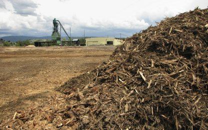 """ГЕРБ и ДПС """"пуснаха"""" тока от биомаса"""