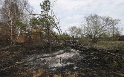 Няма опасност от завишена радиация заради пожара до Чернобил