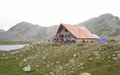 Скитащи птици върху вехт алпийски покрив