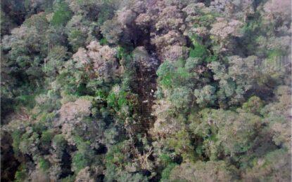 Само трупове след авиокатастрофата в Индонезия