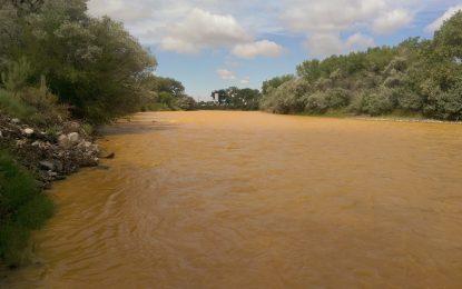 ГМО бактерия предупреждава за замърсяване на водата
