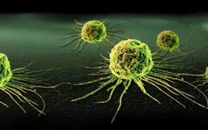 Медицински имплант улавя ракови клетки в тялото