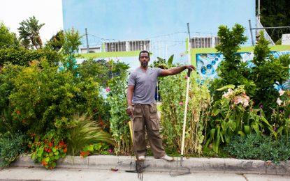 Градинарската революция на Лос Анджелис