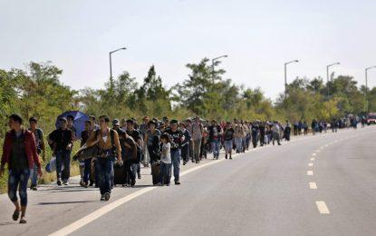 Още 800 сирийци крачат от Истанбул към Одрин (галерия)