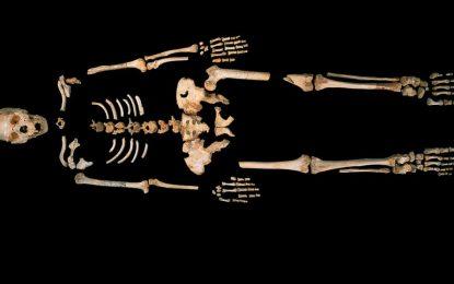 Учени откриха древен скелет на човекоподобно