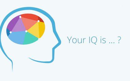 Само един кандидат-общинар си тества IQ-то