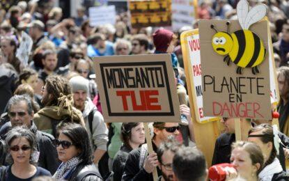 Европарламентът лиши страните от право на ГМО ембарго