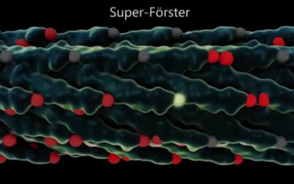 Как ГМО могат да направят фотоволтаиците по-мощни
