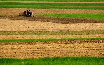 Все по-скъпи ниви в България заради евросубсидиите