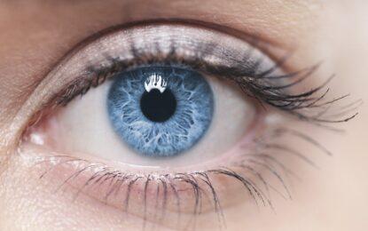 Сините очи идват от Черно море