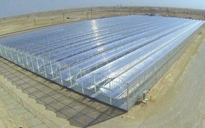 Петрол се добива и със слънчева енергия