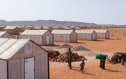 ГМО комари, Ikea за бедна Африка. Иновациите на 2015