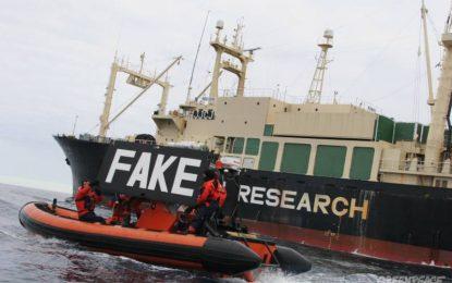 Япония пак тръгна на лов за китове