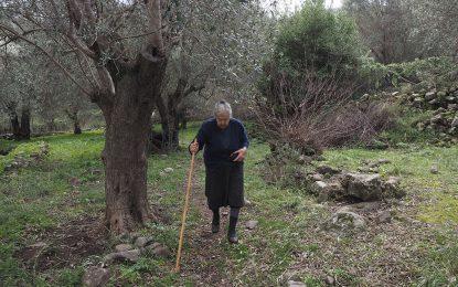 Бабите на Лесбос, които прегърнаха бежанците