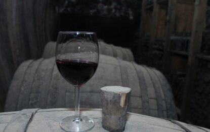 Властта отделя 2 млн. за ремонт на винарската си изба
