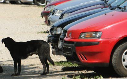Автотърговци в Дупница са арестувани за данъчни измами