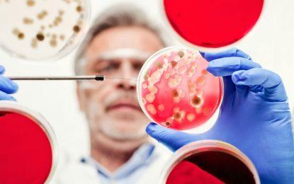 Супербактериите вече са реалност